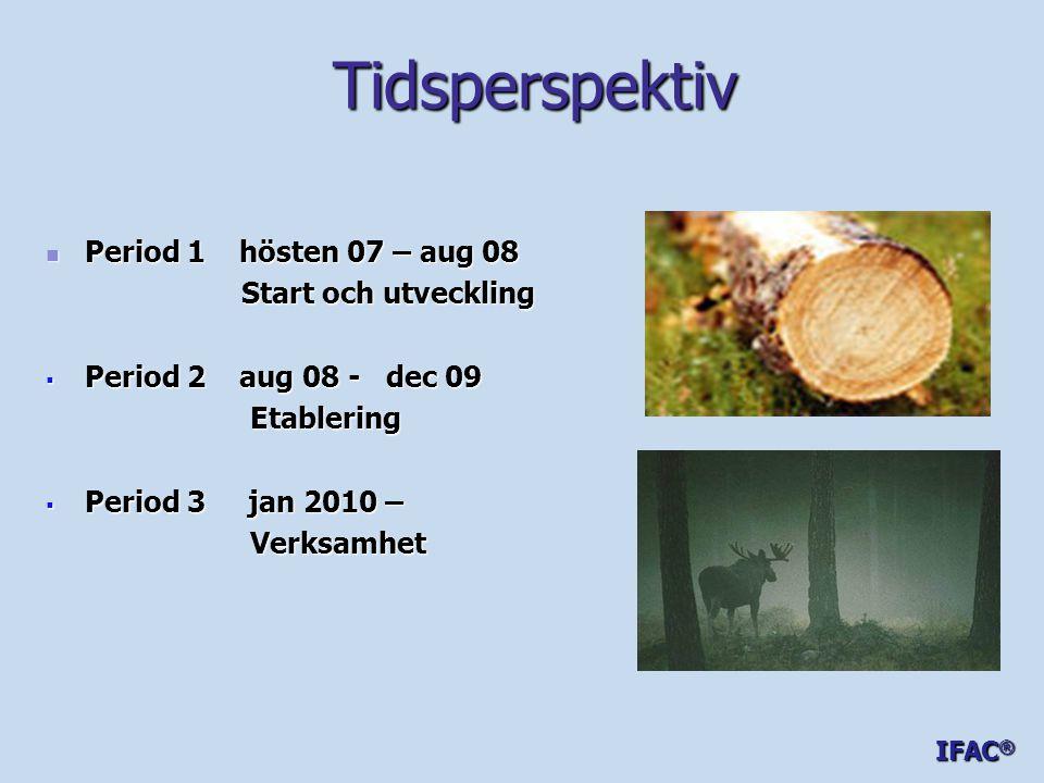 Tidsperspektiv Period 1 hösten 07 – aug 08 Start och utveckling