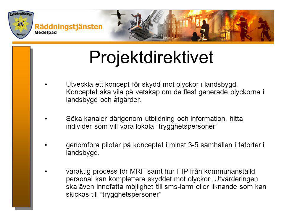 Projektdirektivet