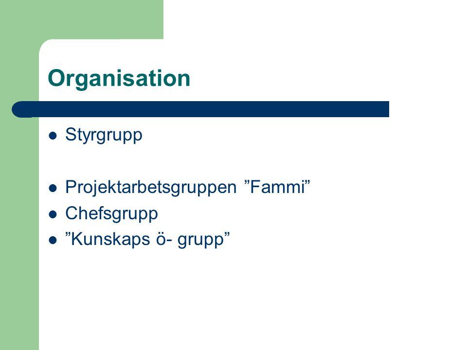 Organisation Styrgrupp Projektarbetsgruppen Fammi Chefsgrupp