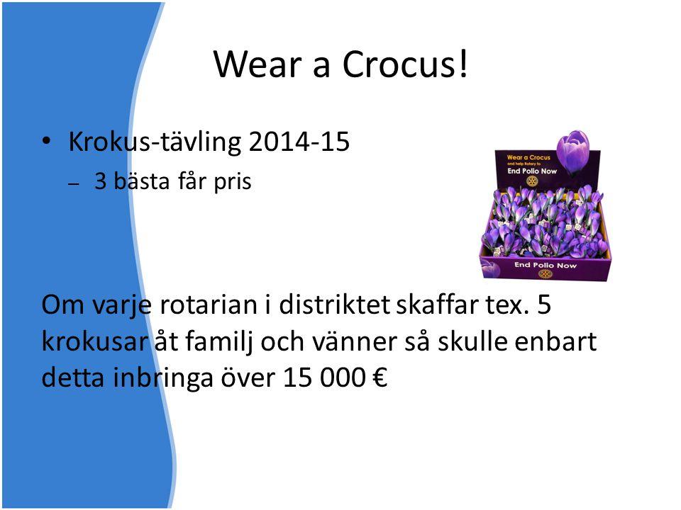 Wear a Crocus! Krokus-tävling 2014-15