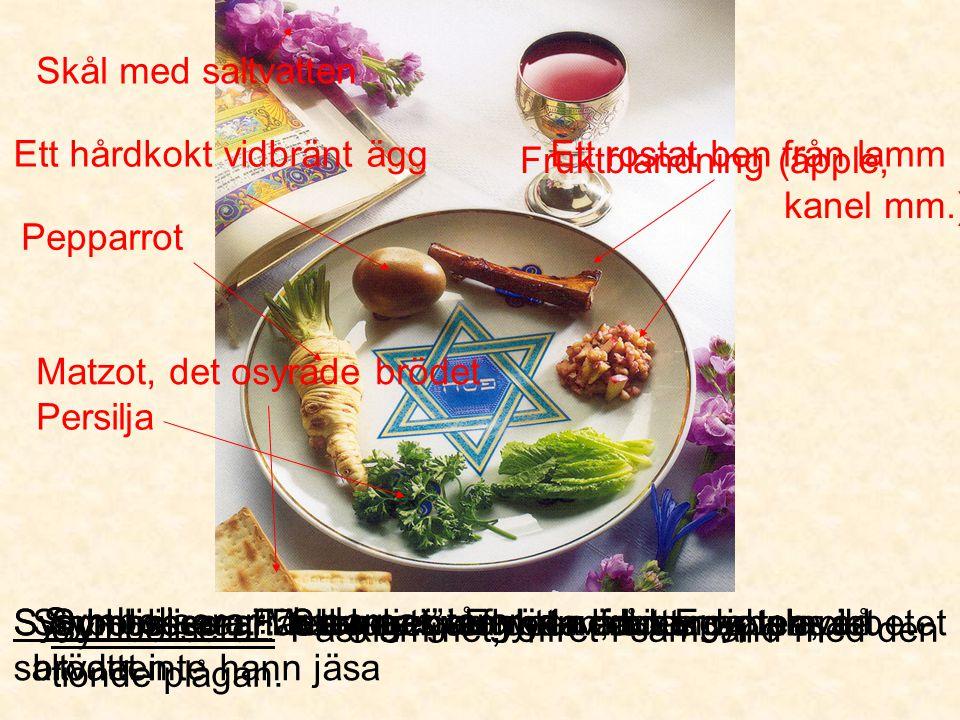 Sedermåltid Skål med saltvatten Ett hårdkokt vidbränt ägg
