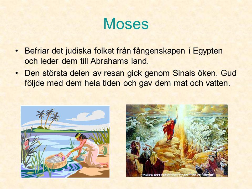 Moses Befriar det judiska folket från fångenskapen i Egypten och leder dem till Abrahams land.