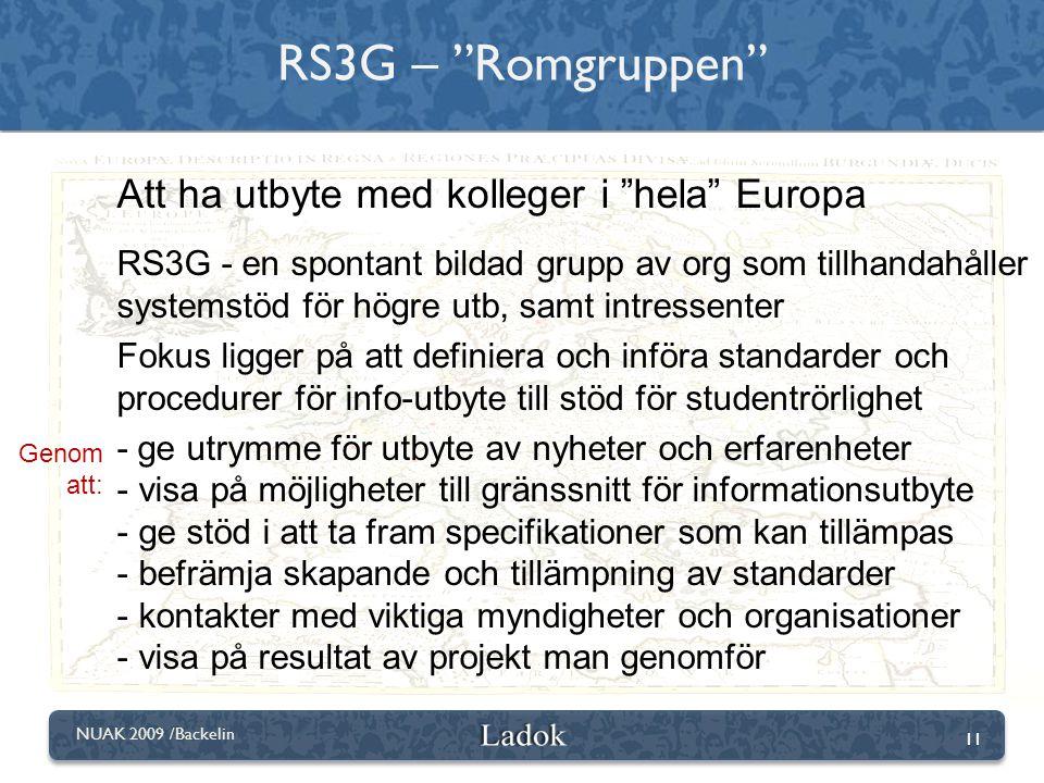 RS3G – Romgruppen Att ha utbyte med kolleger i hela Europa