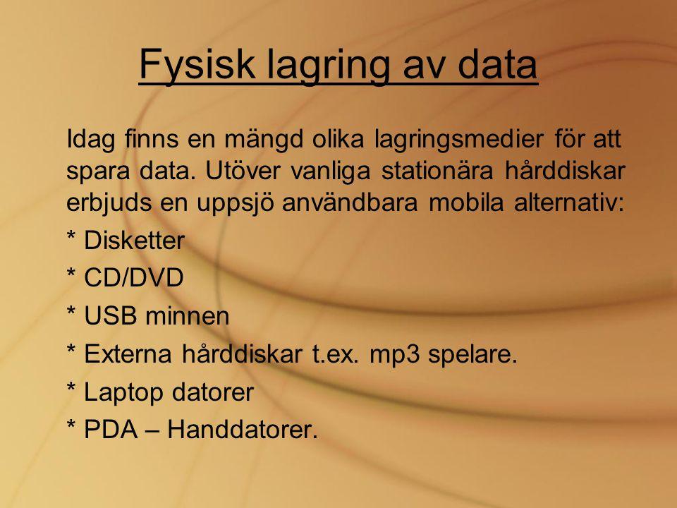 Fysisk lagring av data