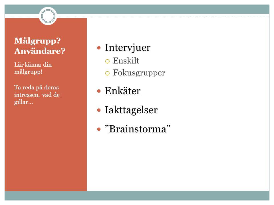 Intervjuer Enkäter Iakttagelser Brainstorma Målgrupp Användare