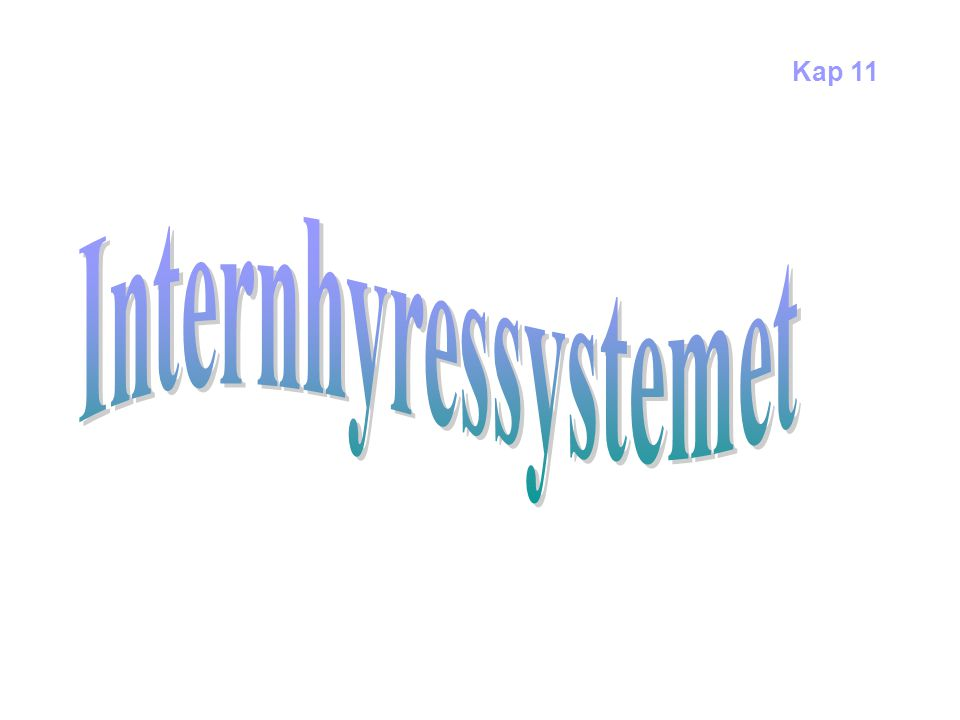 Internhyressystemet Kap 11