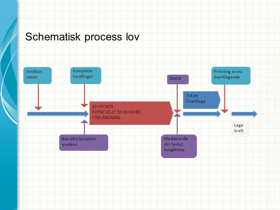 Schematisk process lov