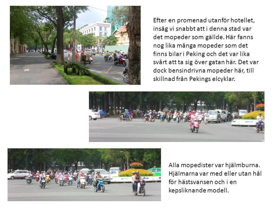 Efter en promenad utanför hotellet, insåg vi snabbt att i denna stad var det mopeder som gällde. Här fanns nog lika många mopeder som det finns bilar i Peking och det var lika svårt att ta sig över gatan här. Det var dock bensindrivna mopeder här, till skillnad från Pekings elcyklar.