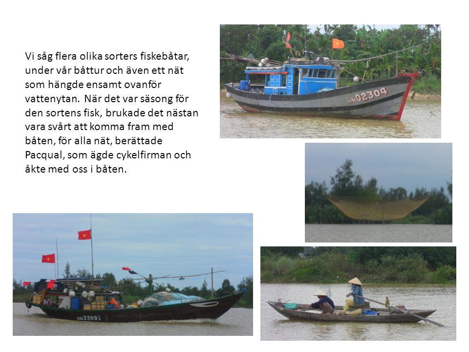Vi såg flera olika sorters fiskebåtar, under vår båttur och även ett nät som hängde ensamt ovanför vattenytan.