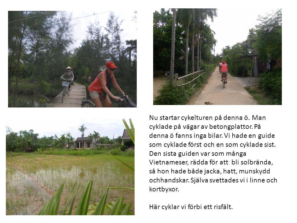Nu startar cykelturen på denna ö. Man cyklade på vägar av betongplattor. På denna ö fanns inga bilar. Vi hade en guide som cyklade först och en som cyklade sist. Den sista guiden var som många Vietnameser, rädda för att bli solbrända, så hon hade både jacka, hatt, munskydd ochhandskar. Själva svettades vi i linne och kortbyxor.