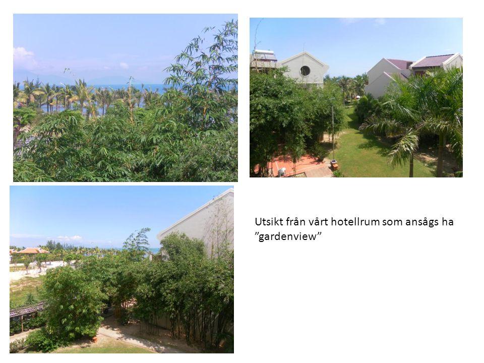 Utsikt från vårt hotellrum som ansågs ha gardenview