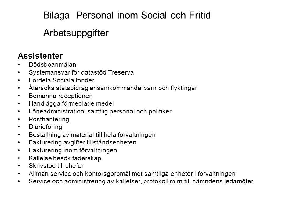 Bilaga Personal inom Social och Fritid Arbetsuppgifter