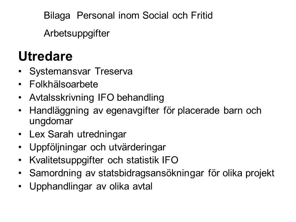 Utredare Bilaga Personal inom Social och Fritid Arbetsuppgifter