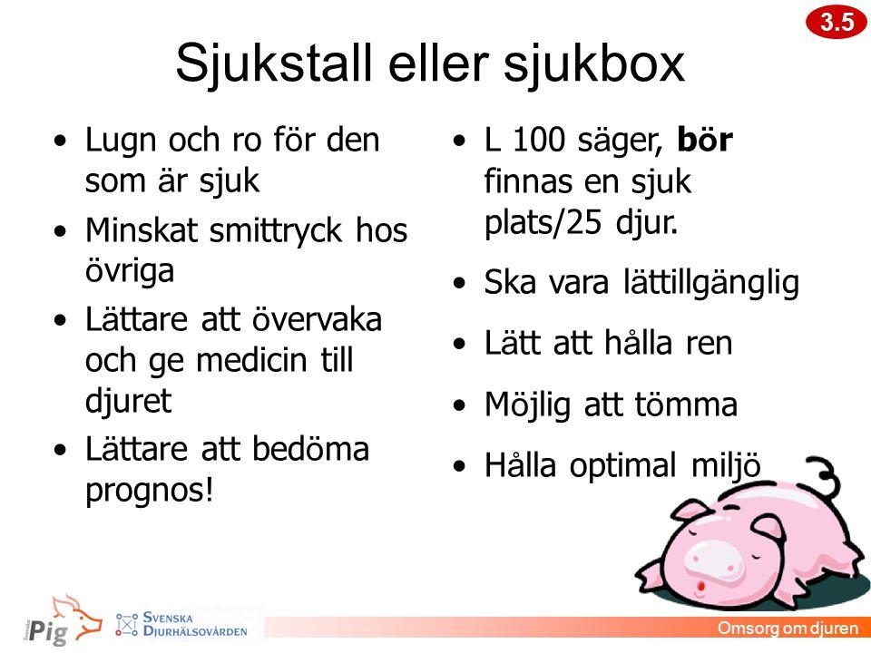 Sjukstall eller sjukbox