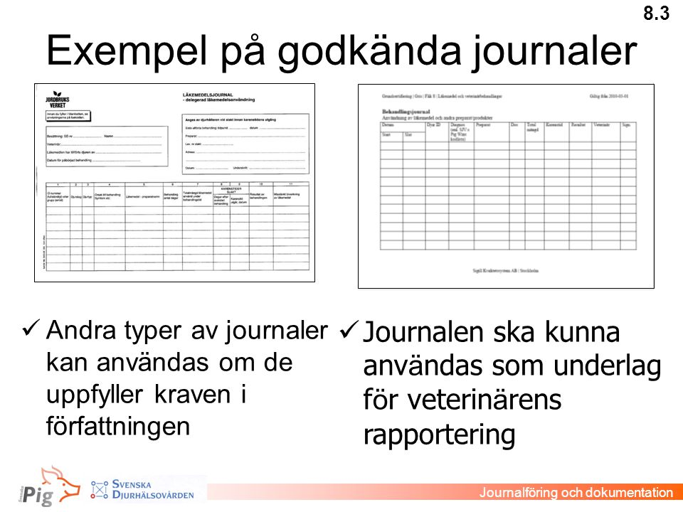 Exempel på godkända journaler