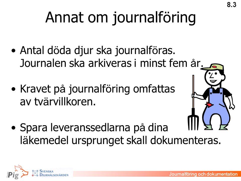 Annat om journalföring