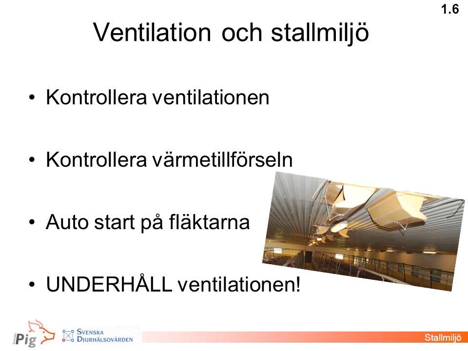 Ventilation och stallmiljö