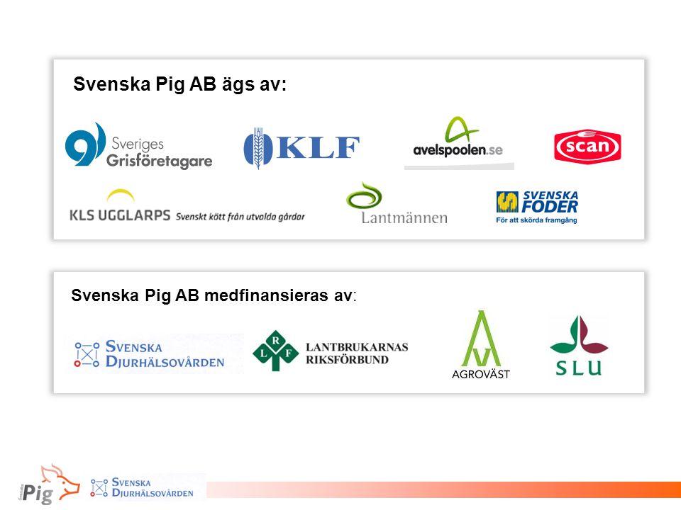 Svenska Pig AB ägs av: Svenska Pig AB medfinansieras av: 95