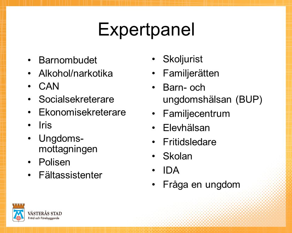 Expertpanel Skoljurist Barnombudet Familjerätten Alkohol/narkotika