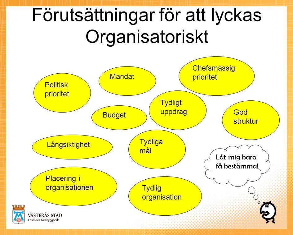 Förutsättningar för att lyckas Organisatoriskt