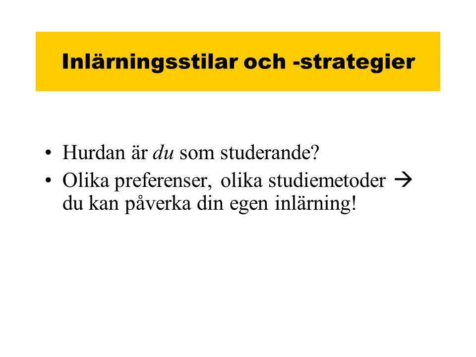 Inlärningsstilar och -strategier