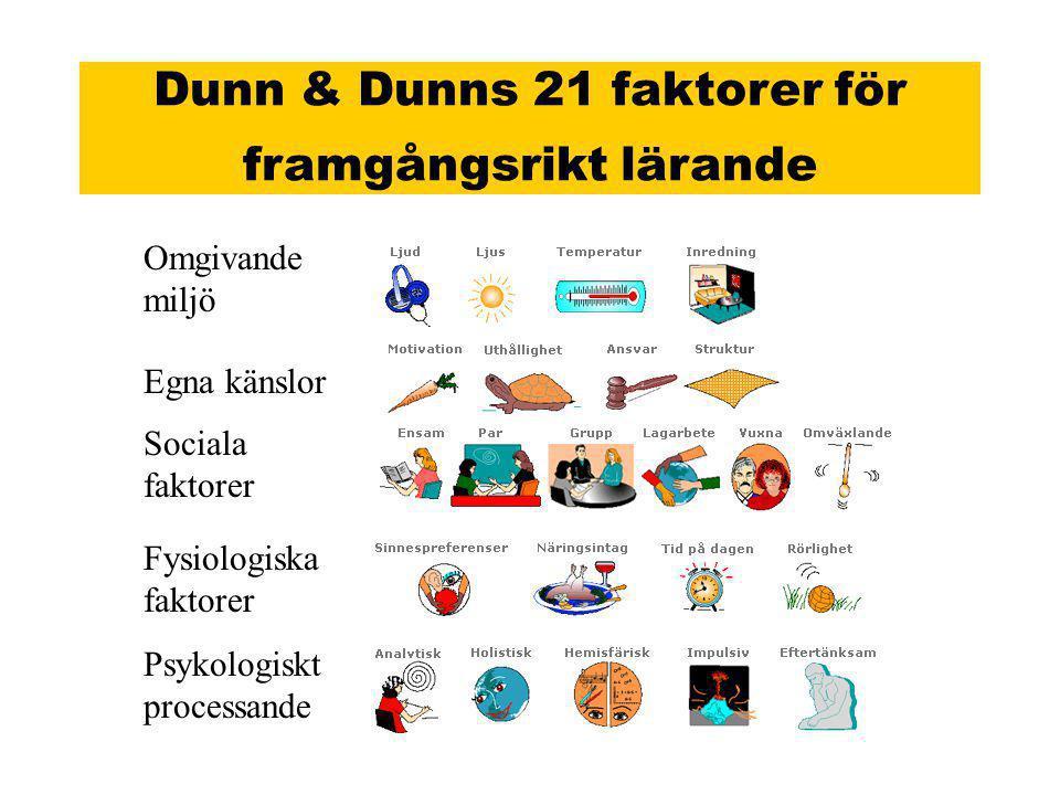 Dunn & Dunns 21 faktorer för framgångsrikt lärande