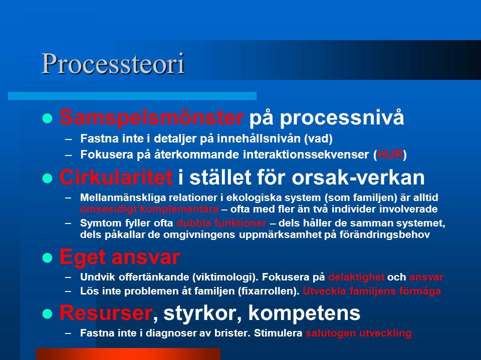 Processteori Samspelsmönster på processnivå