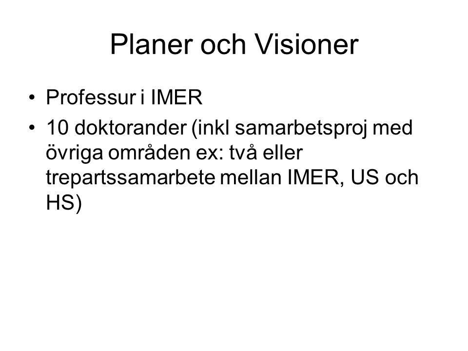 Planer och Visioner Professur i IMER
