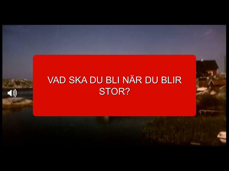 VAD SKA DU BLI NÄR DU BLIR STOR