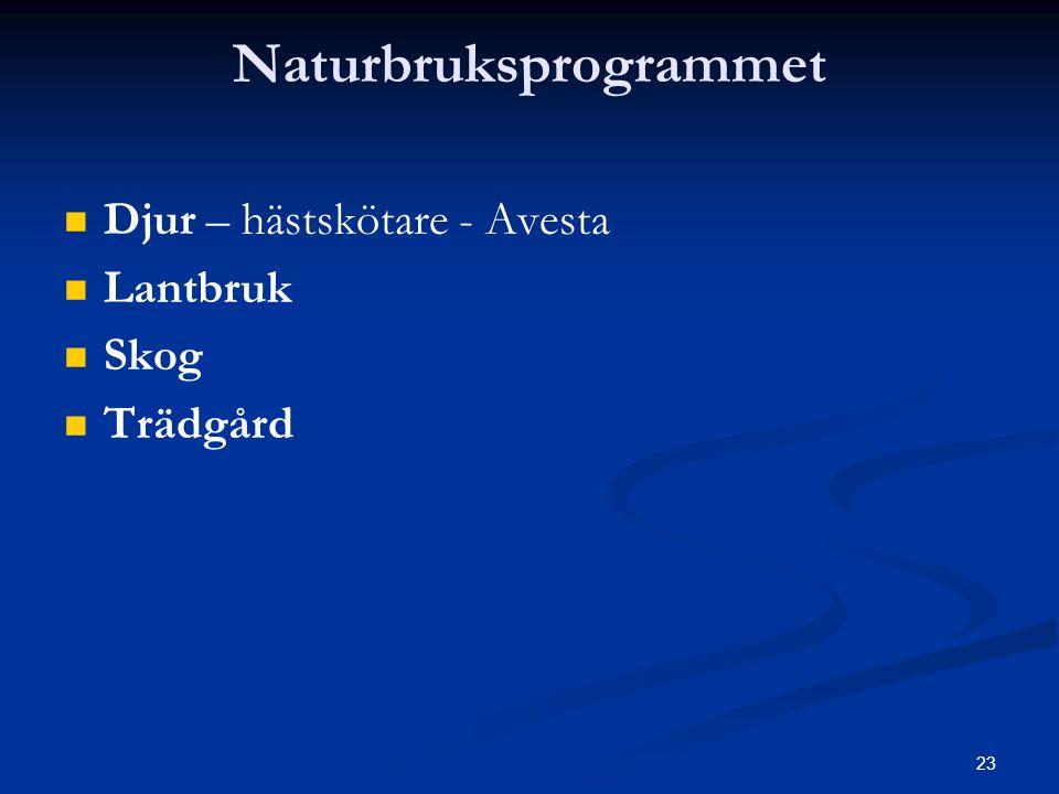 Naturbruksprogrammet