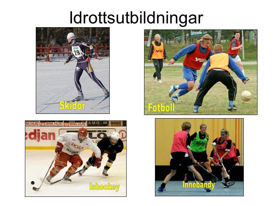 Idrottsutbildningar Idrottsutbildningar Skidor Fotboll Innebandy