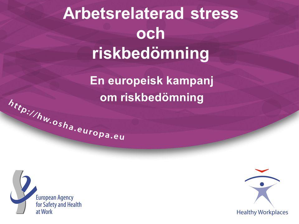 Arbetsrelaterad stress och riskbedömning