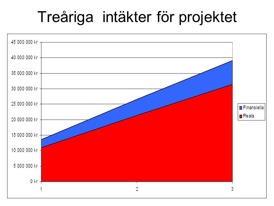 Treåriga intäkter för projektet