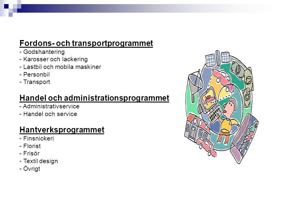 Fordons- och transportprogrammet
