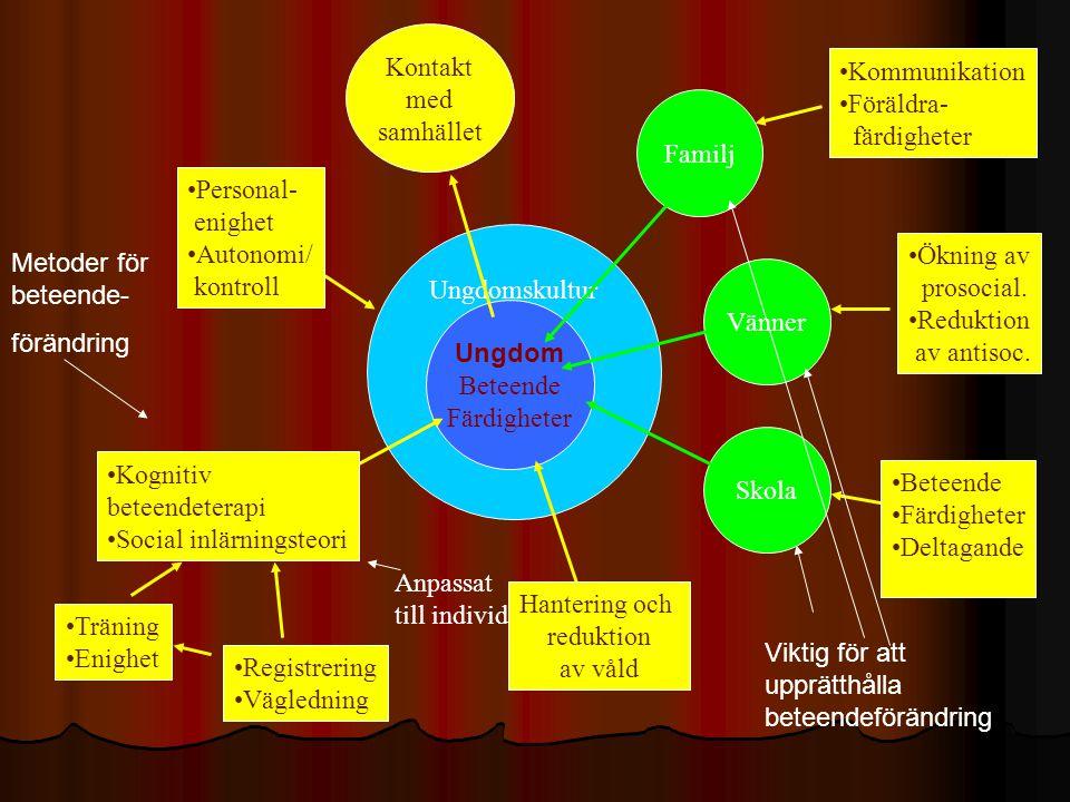Kontakt med. samhället. Kommunikation. Föräldra- färdigheter. Familj. Personal- enighet. Autonomi/