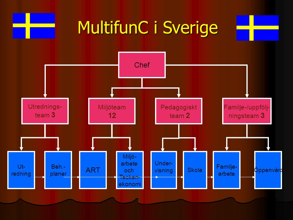 MultifunC i Sverige Chef 12 ART Utrednings- team 3 Miljöteam