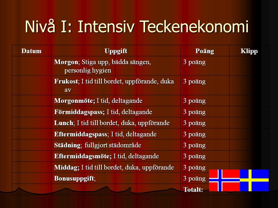 Nivå I: Intensiv Teckenekonomi