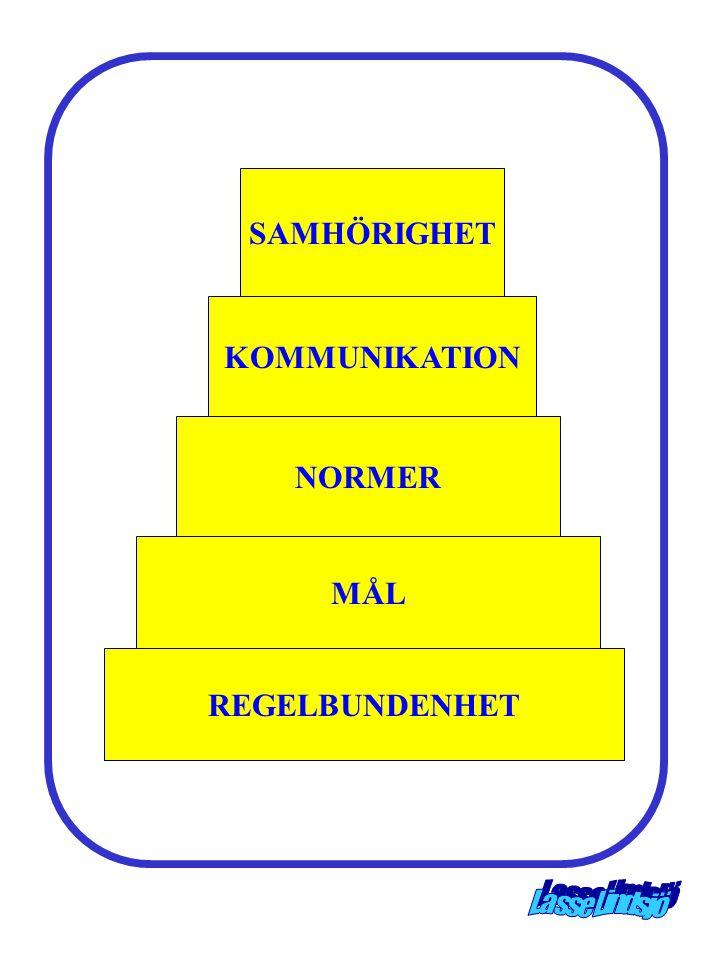 SAMHÖRIGHET KOMMUNIKATION NORMER MÅL REGELBUNDENHET