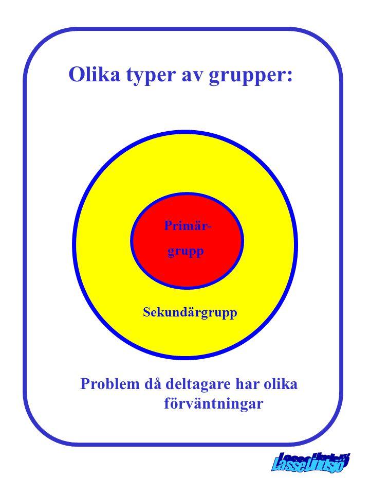 Olika typer av grupper: Problem då deltagare har olika förväntningar
