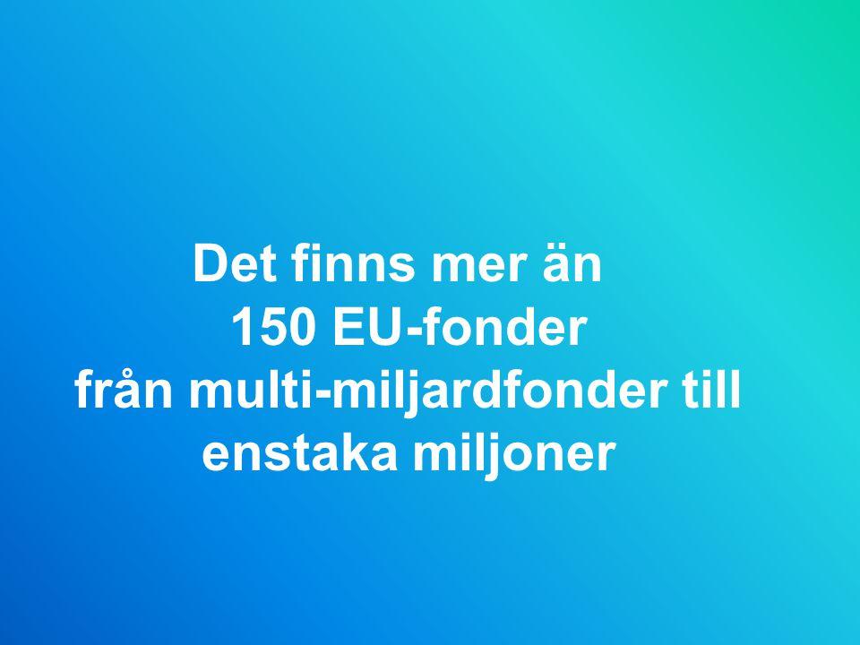 Det finns mer än 150 EU-fonder från multi-miljardfonder till enstaka miljoner