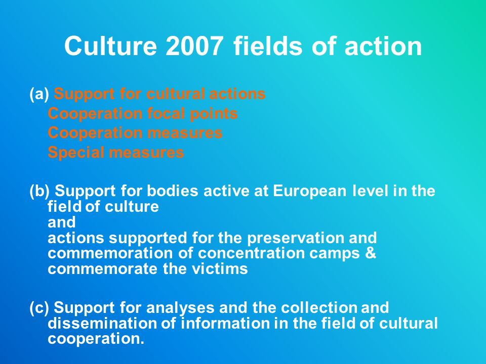 Culture 2007 fields of action
