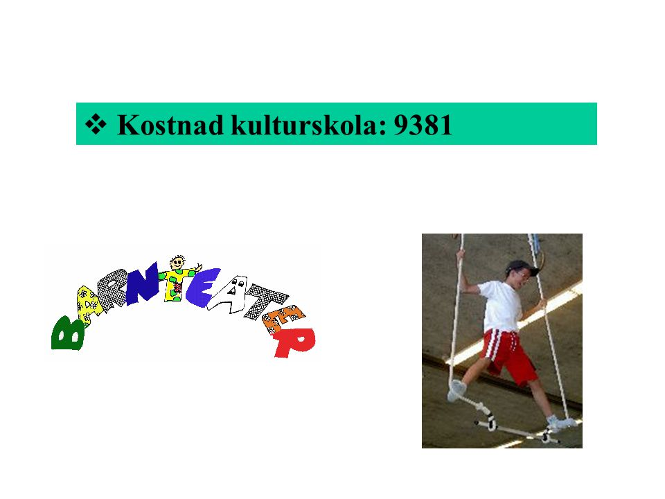 Kostnad kulturskola: 9381