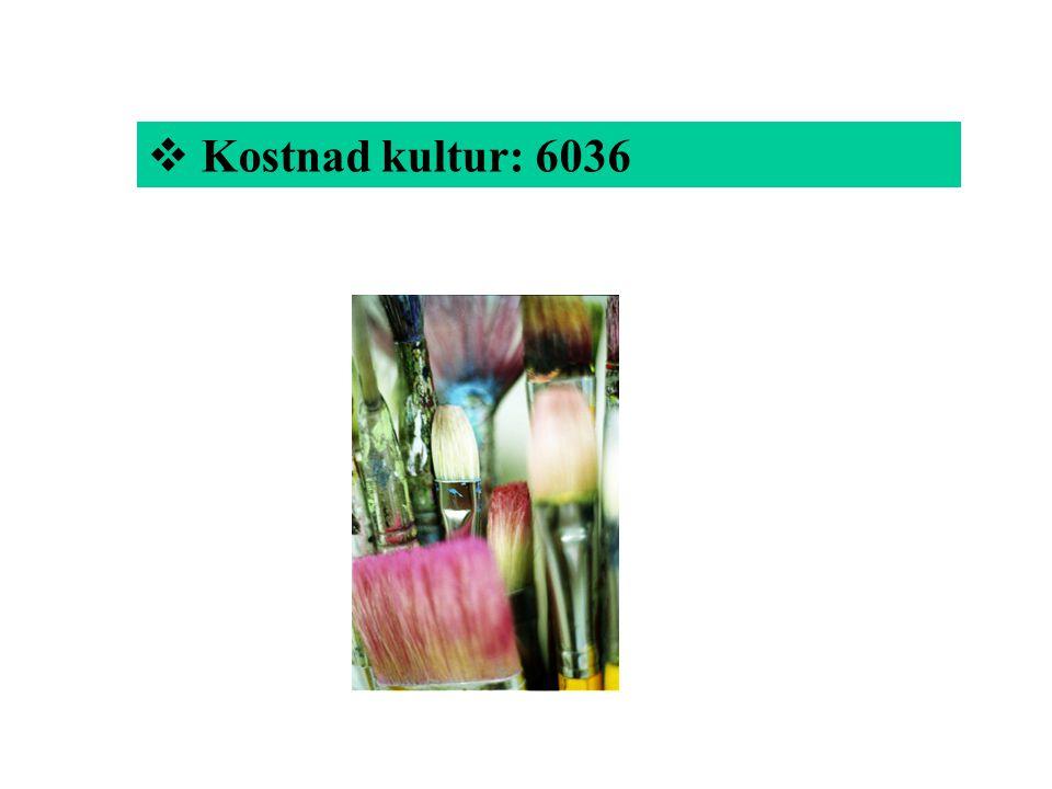 Kostnad kultur: 6036