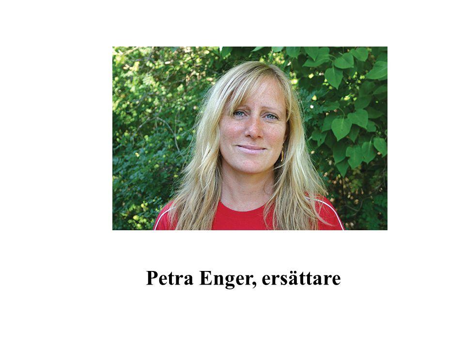 Petra Enger, ersättare
