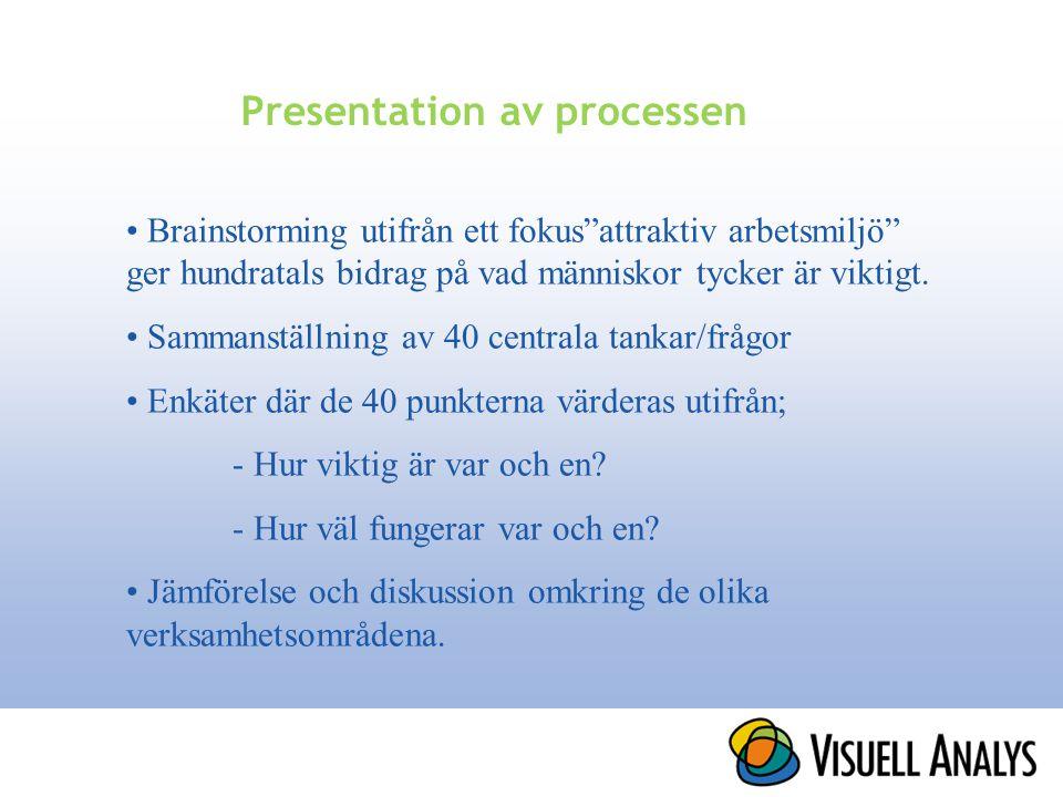 Presentation av processen