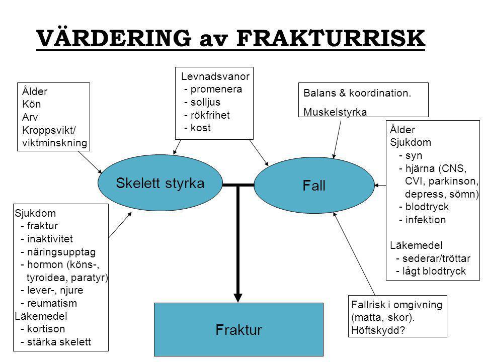 VÄRDERING av FRAKTURRISK