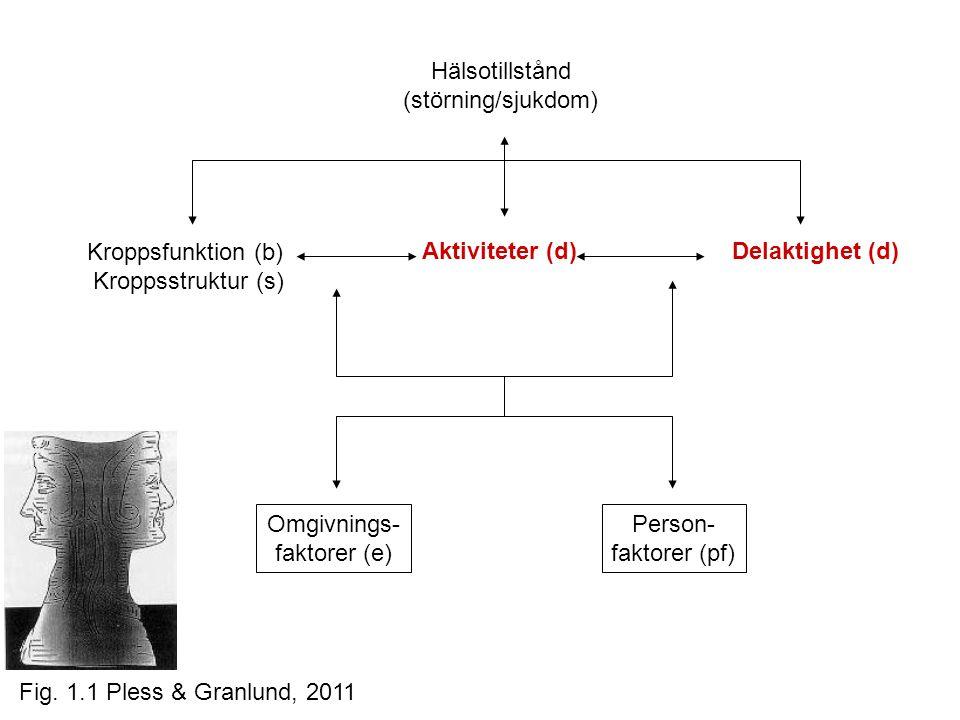 Hälsotillstånd (störning/sjukdom) Kroppsfunktion (b)