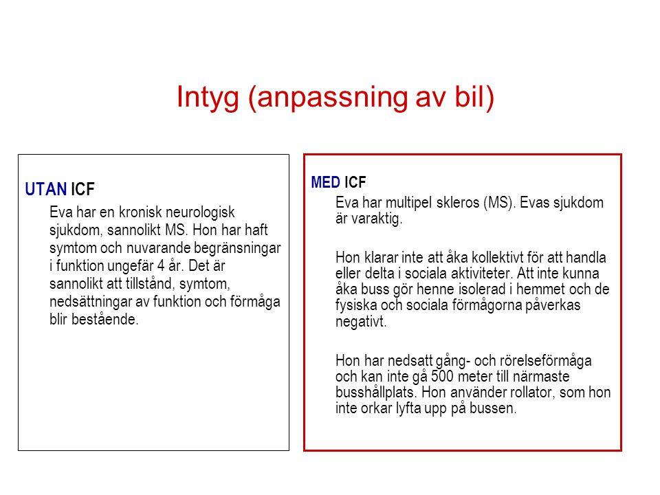 Intyg (anpassning av bil)