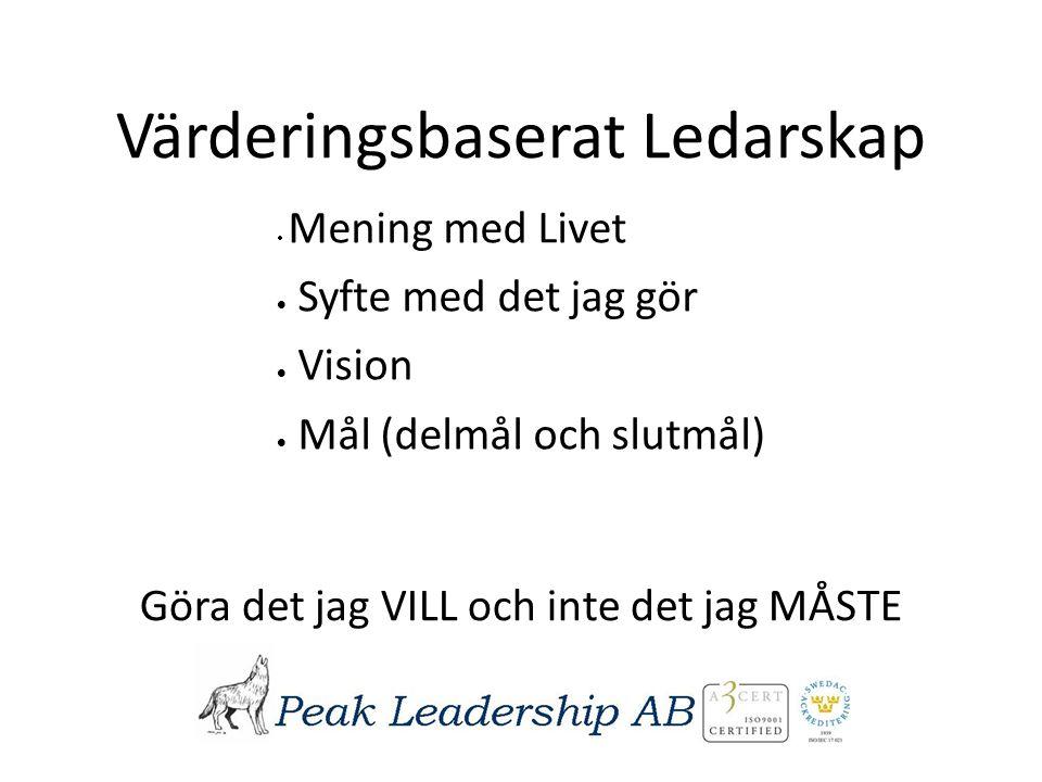 Värderingsbaserat Ledarskap