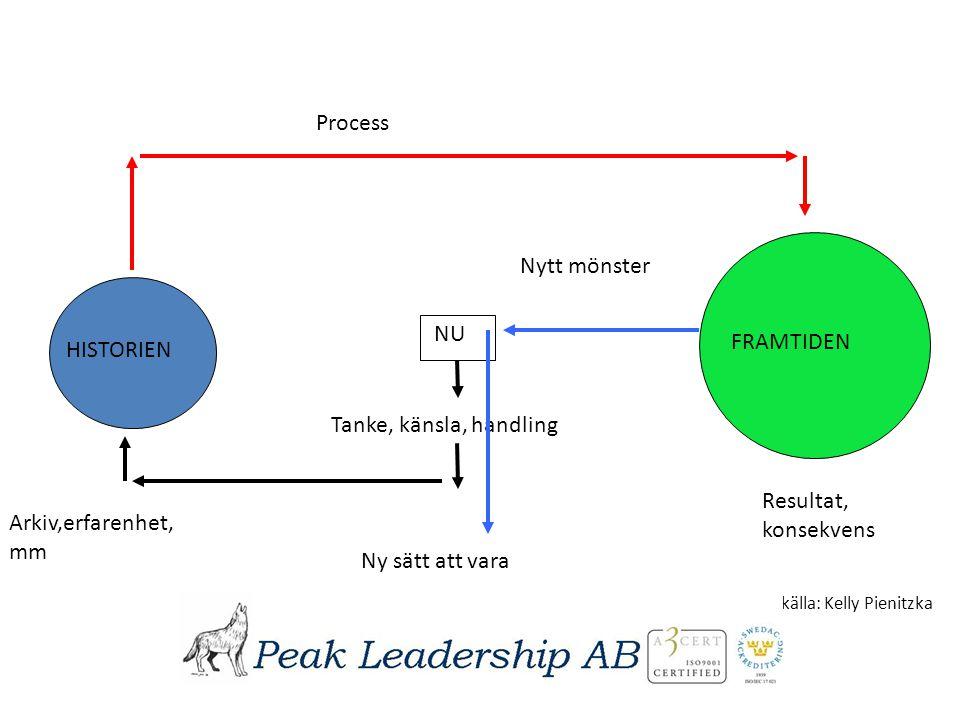 Process Nytt mönster NU FRAMTIDEN HISTORIEN Tanke, känsla, handling